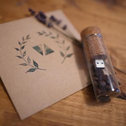 Memory Stick Storage U-disk / Bottle with Cork Flash Drive